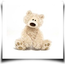 Philbin The Bear 12 Plush