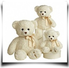 World 11 Ashford Teddy Bear