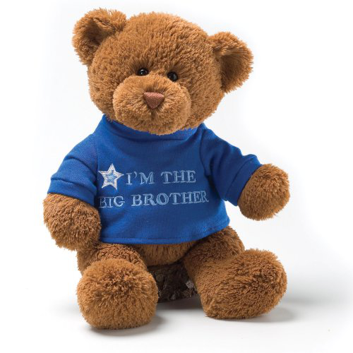 Im The Big Brother Message 12 Bear Plush